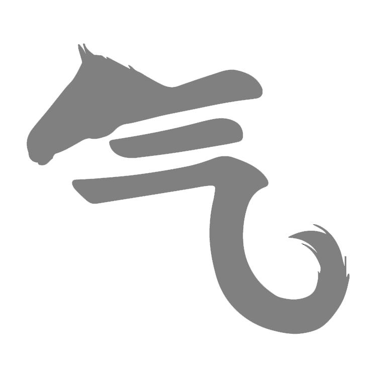(c) Horsesforthesoul.org